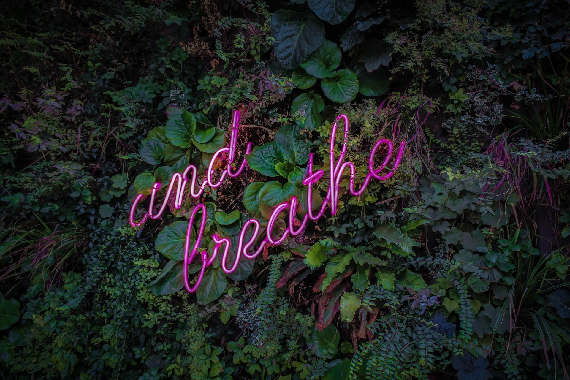 """Осознанное глубокое дыхание делает """"массаж"""" внутренним органам, что благотворно на них влияет"""