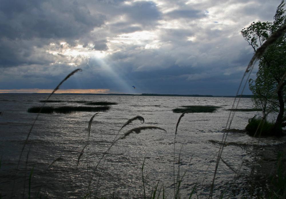 До Московского моря можно легко добраться на машине или на электричке