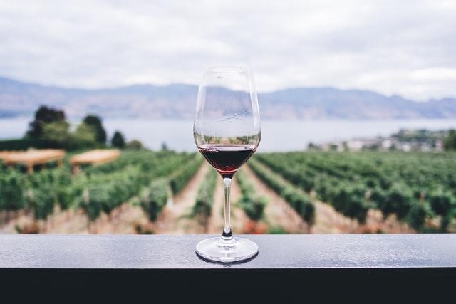 Для людей, далеких от виноделия, само существование безалкогольного вина было достаточно удивительным открытием